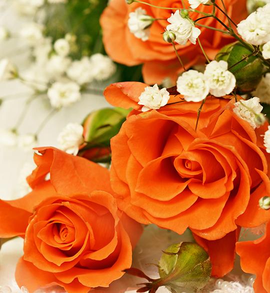 Orange roser i bukett